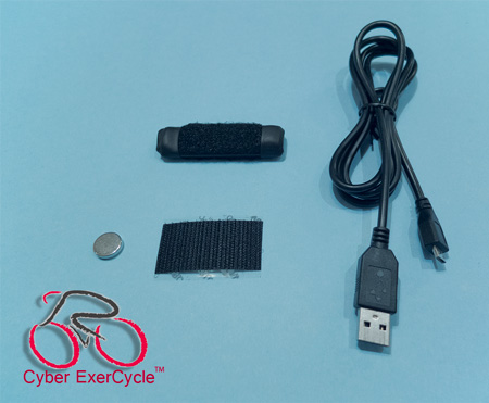 Cyber ExerCycle Lite Kit